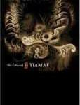 TIAMAT - Copertina The Church Of Tiamat - 2006