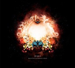 junius - reports from the treshold of death - 2011