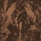 SPLIT – Converge / Napalm Death