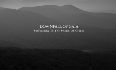 downfall of gaia - Suffocating In The Swarm Of Cranes - 2012