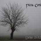 PICEA CONICA – Demo 2012