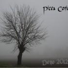 PICEA CONICA – Demo 2012