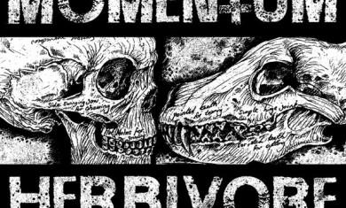 momentum - herbivore - 2013