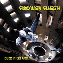 flower flesh - duck in the box - 2012