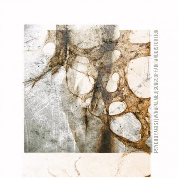 Psychofagist - Songs Of Faint And Distorsion - 2013