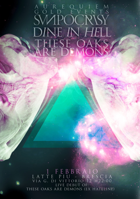 Sunpocrisy - flyer live - 2013