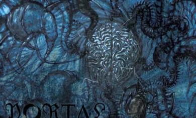 portal - vexovoid - 2013