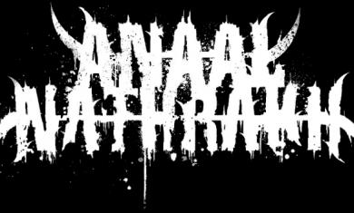 AN - Logo - 2013