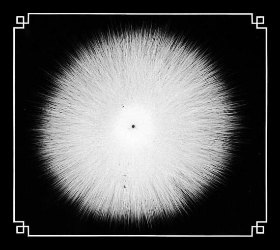castevet - obsidian - 2013