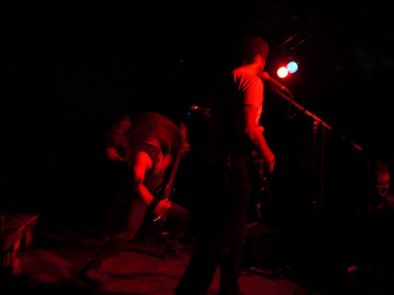 knelt rote - stella natura - 2013