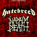 Hatebreed + Napalm Death + Ready. Set. Fall! – Milano