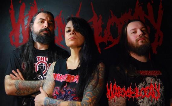 WARMBLOOD - band - 2014