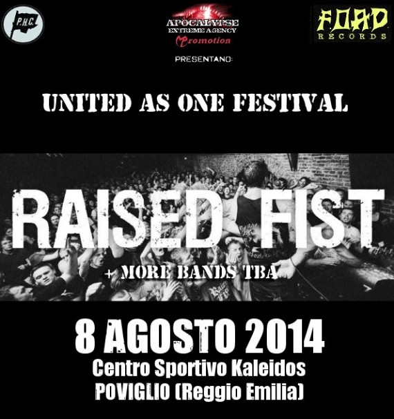 united as one festival 2014 - raised fist