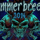 SUMMER BREEZE OPEN AIR 2014: introduzione al festival!