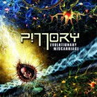 PILLORY – Evolutionary Miscarriage