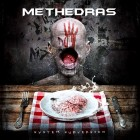 METHEDRAS – System Subversion