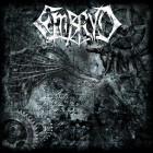 EMBRYO – Embryo
