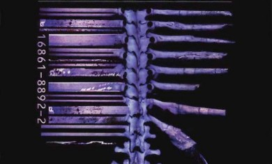Fear Factory - Demanufacture - 1995