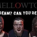 MELLOWTOY: aperte le selezioni per il nuovo cantante