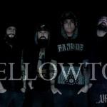 """MELLOWTOY: guarda il video di """"Dead Colours"""""""
