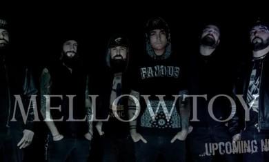 Mellowtoy_NewLineUp