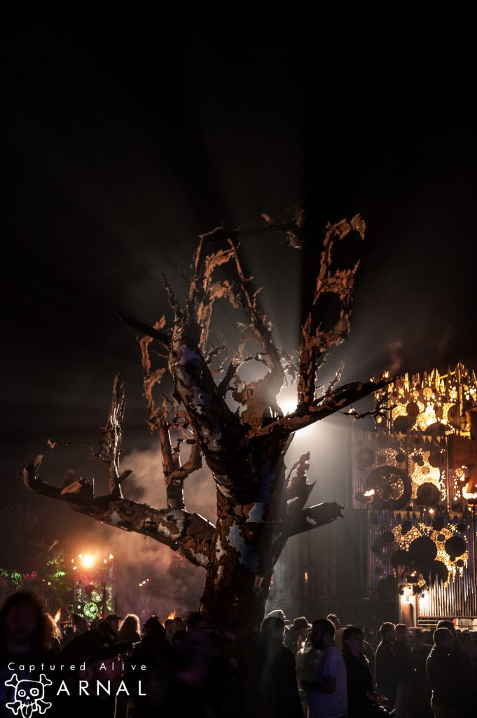 Hellfest 2016 - albero alla sera - 2016