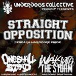 straight-opposition-locandina-2016